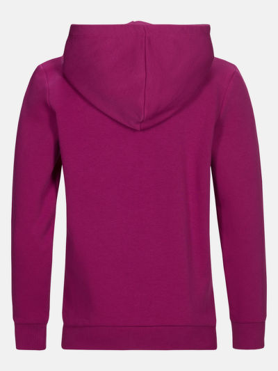 MIKINA PEAK PERFORMANCE JR GROUND ZIP HOOD(SPORTSWEAR CORE KNTG 2002-12A)